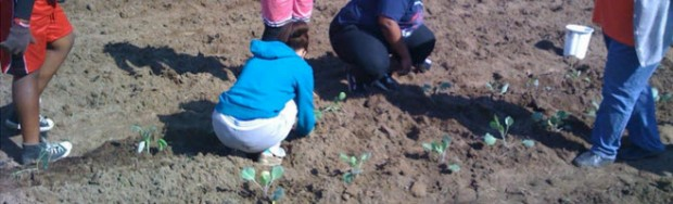 The Christian Methodist Episcopal ChurchFifth Episcopal District (Alabama and Florida) launched an annual garden project in 2012.